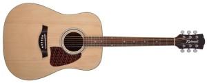 Akoestische gitaar huren